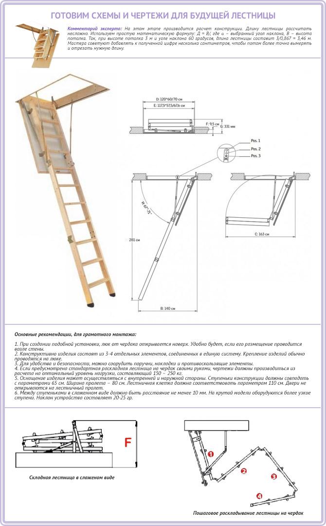 Чертежи складной лестницы для чердака