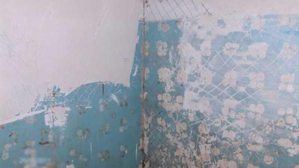Перед тем как класть плитку на стену их выравнивают
