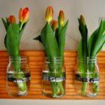 тюльпаны в банках на стене